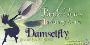 Damselfly-tour banner